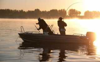 Ловля рыбы на волге
