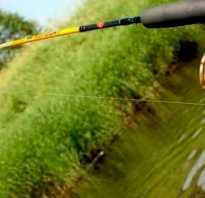 Как правильно ловить на спиннинг