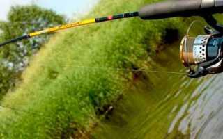 Как ловить спиннингом