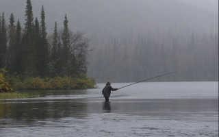 Как ловить хариуса на поплавочную удочку