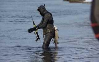 Все для подводной рыбалки