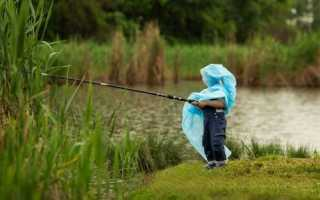 Ловится ли рыба в дождь