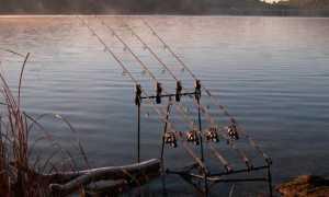 Как ловить рыбу на донку