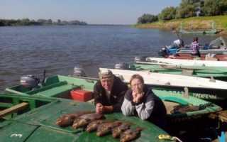 Как приготовить болтушку для рыбалки