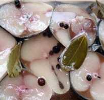Как подготовить рыбу к копчению в коптильне