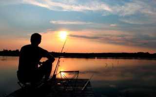 Где хорошо ловится рыба