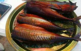 Какую рыбу коптить