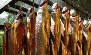 Какая рыба лучше для горячего копчения