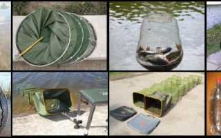 Как выбрать садок для рыбалки