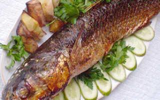 Кефаль какая рыба