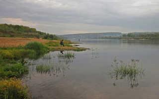 Где порыбачить на оке в московской области
