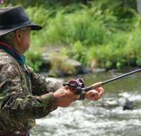 Где лучше ловить рыбу