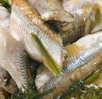 Камчатская корюшка
