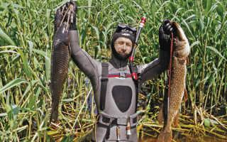 Костюм для подводной охоты как выбрать