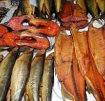 Копченая рыба рецепты в коптильне