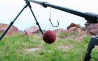 Как ловить на бойлы карпа