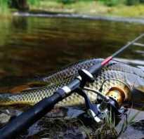 Как ловить на фидер на реке
