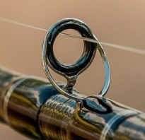 Леска рыболовная как выбрать диаметр